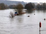 Thames Flooding at Pangbourne (detail)